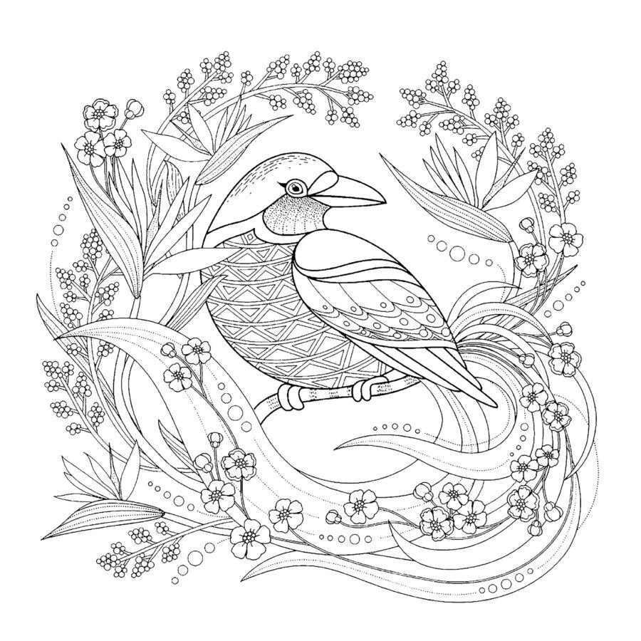 Colordi madaras színezős szatyor